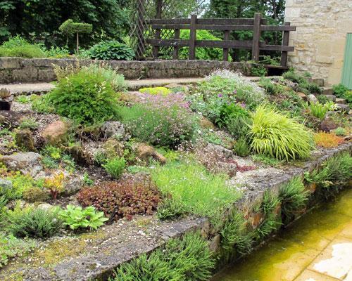 jardin gypsophile